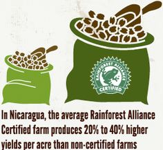 In Nicaragua, Rainforest Alliance Certified farms are producing higher yields -- better for the farmers, better for coffee lovers!
