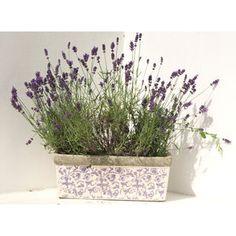 Image result for garden planters white