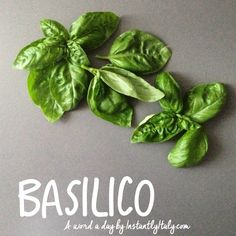 An Italian Word A Day by instantlyitaly.com