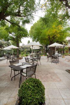 at Albert Café, Restaurant Marseille, Hotel Restaurant, Belle Villa, France Europe, Provence France, Outdoor Furniture Sets, Outdoor Decor, French Riviera, Restaurants