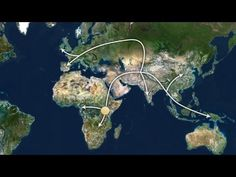 AFRICAN ORIGINS: Tracing Mankind's Ancestors - The African Roots Of The ...