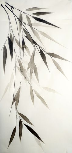 Bamboo leaves on white. Pen & Ink drawing. Valeria Viscardi - Bamboe tak