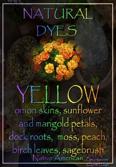 YELLOW - onion skins, goldenrod stems and flowers, sunflower petals, dock roots, marigold petals, moss, peach leaves, birch leaves, sagebrush