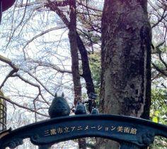 Totoro around Tokyo