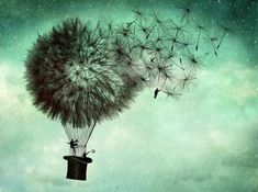 Mixed media Illustrations by Catrin Welz-Stein