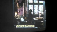 I didn't even know that was possible. | 38 Wonderful Moments In Closed-Captioning History