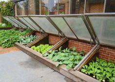 Petite serre de jardin : choix et conseils