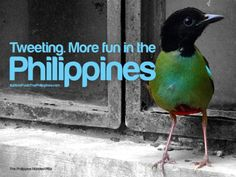 Tweeting | 25 Things That Are More Fun In The Philippines