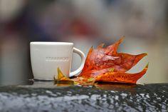 Autumn at Starbucks Coffee Break, Coffee Time, Coffee Coffee, Starbucks, Dear World, Happy September, Happy Fall Y'all, Mug Shots, Perfect Match