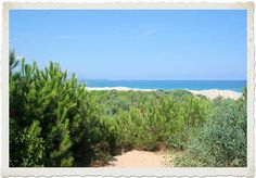 Voglio il mondo a colori: La spiaggia di Naracu Nieddu