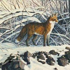 Fox picture...