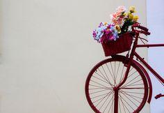 ¡¡¡ Ojos de Juventud !!! Hoy, te regalo flores para ti. - ESCUCHA....Vals www.youtube.com/watch?v=vTR2_oliC78 Porque cada dia es diferente, y siempre hay que celebrar un nuevo amanecer, hoy, quiero regalate estas flores para ti, y, a ritmo de este vals, ofrecerte mi mejor sonrisa, donde veas en cada petalo de sus flores, un dia mas juntos que nos quedan por vivir. Y, aunque los dias nos van pasando, nuestros recuerdos, en aquellos años que nos pasaron juntos, sigan siendo nuestros ojos de…