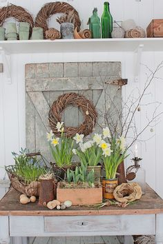 DISEÑO VIBEKE: la creatividad con la reutilización y cultivos primaverales!