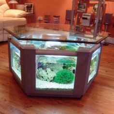 Just An Aquarium Dining Room Table