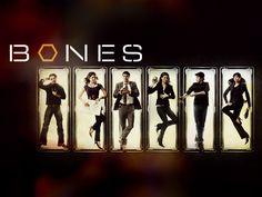 Bones-Cast-bones-1481843-1024-768.jpg 1,024×768 pixels