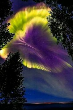This looks like a huge pansy blossom created by the aurora borealis!  Gorgeous!
