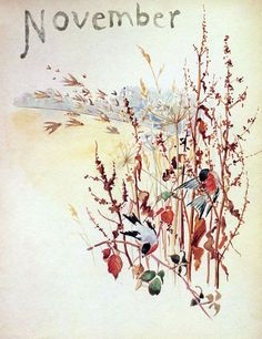 """I just received this book by Edith Holden today.  It's called """"The Nature Notes of an Edwardian LadY"""".  Lovely illustrations and poetry."""