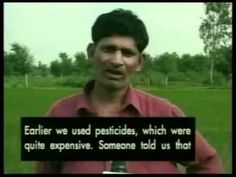 the Center for Science and Environment (CSE) said that soft drinks manufactured in India, including those carrying the Pepsi and Coca-Cola brand names, contain unacceptably high levels of pesticide residues and consequently many farmers have used the beverages to combat pests because of low costs compared to conventional pesticide brands.