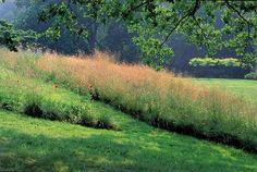 Dans les pariries du Bois de Morville, sa propriété de Varangeville, près de Dieppe. Crédit photo: Pascal Cribier/Éditions Xavier Barral, 2009.