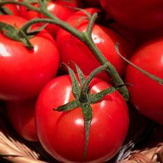 #tomate #madrid