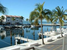 This 2 bedroom condo is located on milemarker 86 in Islamorada, Florida Keys in the Futura Yacht Club complex on the bayside (gulfside) of the island. It is a secured complex with assigned parking. An...