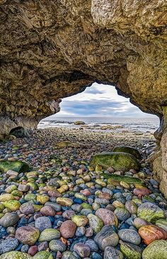 Terre-Neuve ✈ The Arches Provincial Park, Newfoundland, Canada Newfoundland Canada, Newfoundland And Labrador, Fogo Island Newfoundland, Newfoundland Tourism, The Places Youll Go, Places To See, Beautiful World, Beautiful Places, Gros Morne