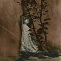 Ovate by Ellen Rogers #photography