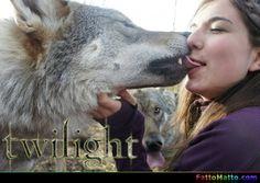 Twilight - via FattoMatto.com #FattoMatto