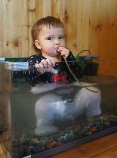 is it ok that These 29 Kids Seriously Think They Are Animals?
