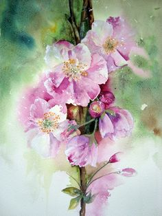 'Cherry Blossom' Watercolour on Fabriano Artistico Extra White Rough                                                            Approx 27cm x 37cm