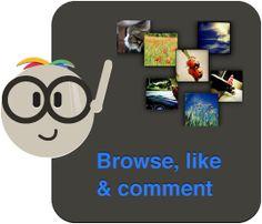 Instagram analytics and management tool suite