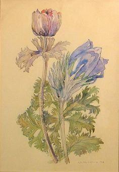 Charles Rennie Mackintosh, Flower study