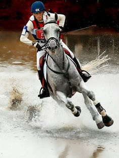 The most important role of equestrian clothing is for security Although horses can be trained they can be unforeseeable when provoked. Riders are susceptible while riding and handling horses, espec… Horse Photos, Horse Pictures, Horse Girl, Horse Love, Pretty Horses, Beautiful Horses, Cross Country Jumps, Equestrian Outfits, Equine Photography