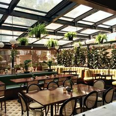 Restaurant, green, curved banquette, cane webbed chairs, British colonial