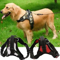S/M/L/XL Dogs Harness Collars High quality Vest Dog Training Harness dog accessories Dog Training Harness, Dog Clicker Training, Dog Harness, Puppy Training Schedule, Dog Training Tips, Training Plan, Diy Dog Collar, Cat Dog, Hunting Dogs