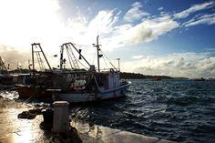 Porec Hafen