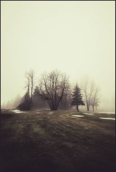 iPhoneography, Oasis – Armin Mersmann