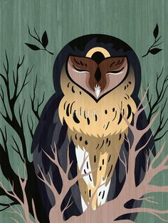 'Wooden Owl' by Hbitik