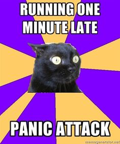 Anxiety Cat lol Yasmine El Moursi Hicks