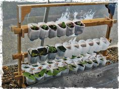 http://4.bp.blogspot.com/-Ioij_NZqYKI/UQUDpeWd5iI/AAAAAAAACJQ/f5NMwwejUyY/s640/milk+carton+planter+1.jpg