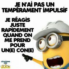 Je May Be Wrong improbable pour Homme Femme Drôle Blague Sarcasme Sarcastique Humour S 5XL