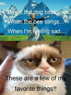 Grumpy cat jokes, grumpy cat quotes, funny grumpy cat quotes, grumpy cat funny, funny grumpy cat …for more humor quotes visit Grumpy Cat Quotes, Funny Grumpy Cat Memes, Cat Jokes, Funny Animal Jokes, Funny Cats, Funny Animals, Funny Jokes, Animal Memes, Cat Puns