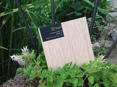 East Oak 15411. Panasphere's TFLaminate surface designs at Monarch Custom Plywood Inc. T. 905.669.6800. Monarch Custom Plywood Inc. is Panasphere Surfaces distributor in Ontario, Canada. Monarchply.com