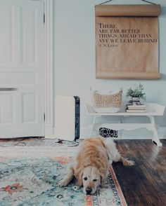 Loving the wood floor, the rug, the bench, but the dog's my favorite by far.