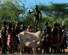 japanese street fashion japanese fashion magazine japan store korean style chinese fashion trendy : Ethiopia T stage of the back of a bull, naked show define aesthetically pleasing face