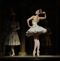is a ballet in three acts, four scenes with an apotheosis, choreographed by Marius Petipa, with music by Alexander Glazunov, his opus Historia Do Ballet, Famous Dancers, Ballet Companies, Dance Pictures, Dance Pics, Nureyev, Dance Movement, Ballet Photography, Saint Petersburg
