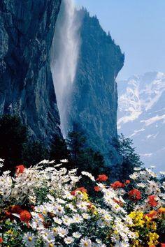 Bjerg og blomster.