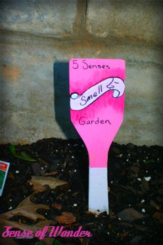 create a 5 senses garden for your kids to explore. Ill need to check this one out....might be kinda cool