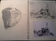 GCSE Sketchbook by Noah Walton Gcse Art Sketchbook, Sketchbooks, Art Journals, Decay, Still Life, Inspiration, Biblical Inspiration, Sketch Books, Art Diary