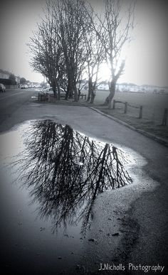 puddle reflections | Puddle reflections